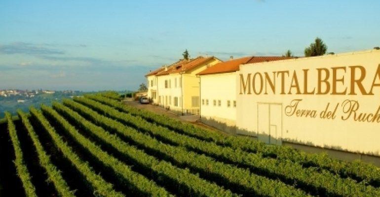 montalbera-primo-produttore-di-ruche-pluripremiati